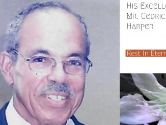 His Excellency Cedric Harper